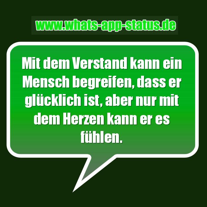 WhatsApp Status Spruch: Mit dem Verstand kann ein Mensch begreifen ...